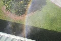 gutter-cleaning-1