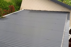 roof-washing-2