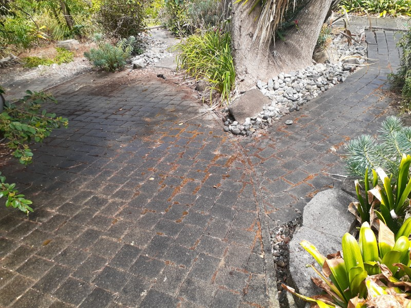 driveway-cleaning-9