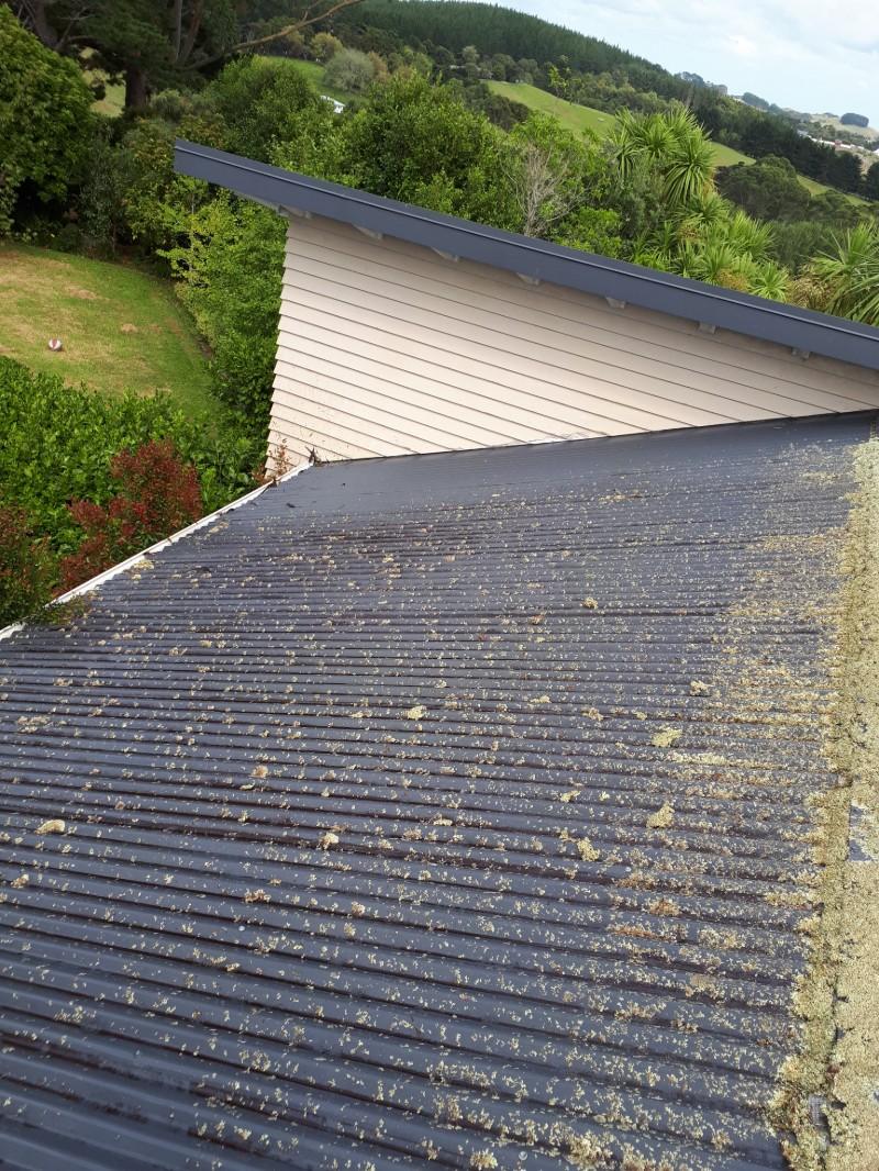 roof-washing-1