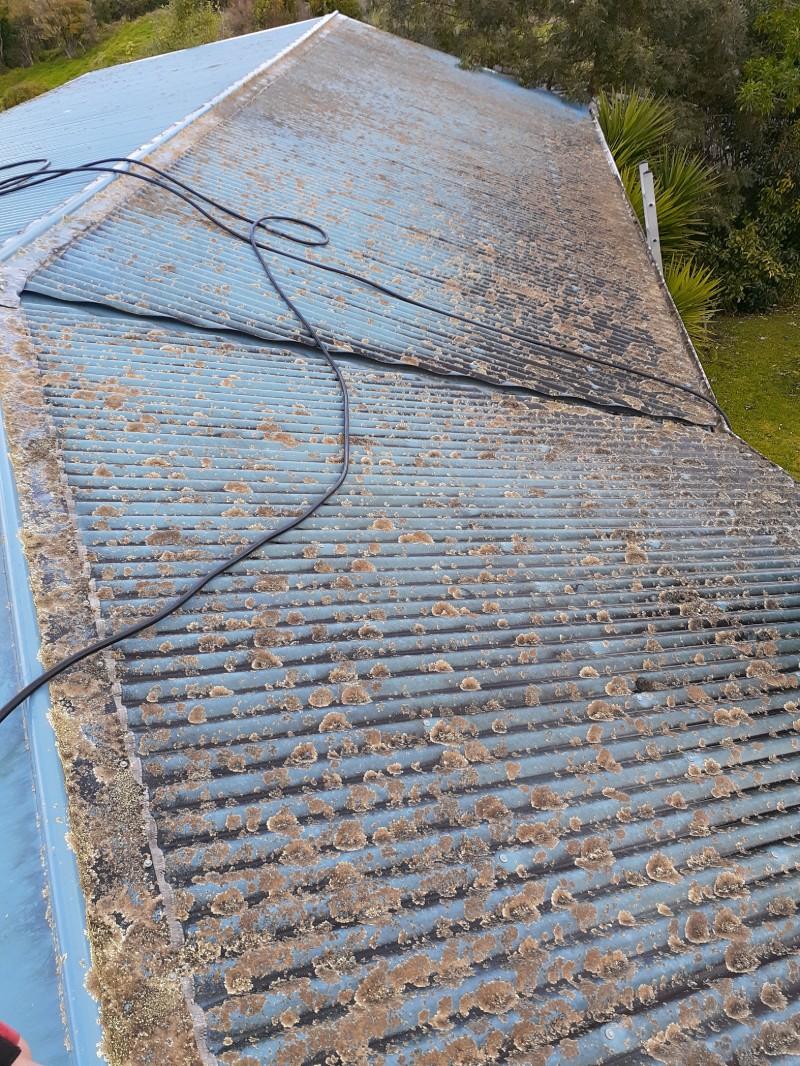 roof-washing-11