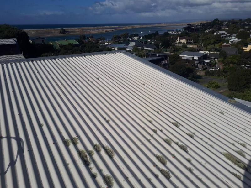 roof-washing-5