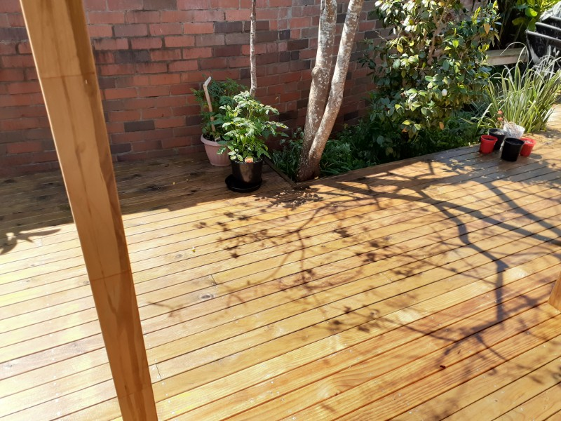 timber-cleaning-12