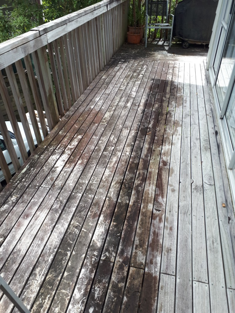 timber-cleaning-7